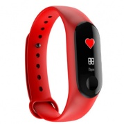 SMARTERRA FitMaster Color Red * Фитнес-браслет